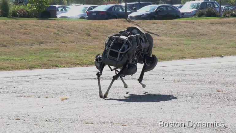 Wildcat robot